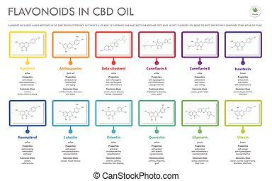 oel, cbd, flavonoids, infographic, geschaeftswelt, strukturell, horizontal, formeln