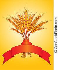 Ohren aus Weizen