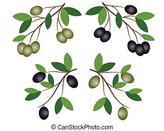 olive, dekor