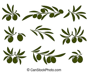 olive, satz, zweig