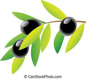 Oliven.