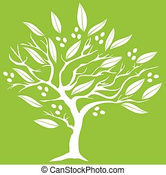 Olivenbaum.