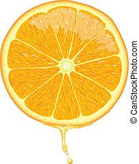 Orangenscheibe - Vektor