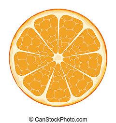 Orangenscheibenvektorkunst