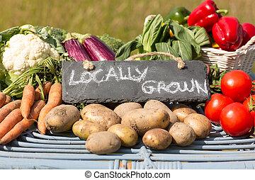 Organisches Gemüse auf einem Stand auf einem Bauernmarkt.