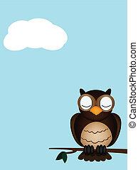 Owl schläft