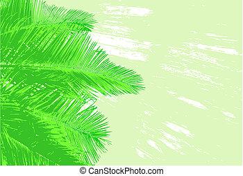 Palm-Frands