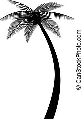 Palmbaum-Silhouette.