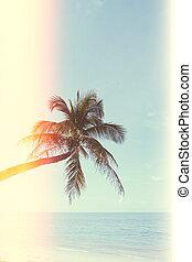 Palmen am tropischen Strand.