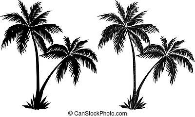 Palmen, schwarze Silhouette