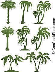 Palmen-Silhouette