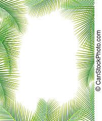 Palmenblätter auf weiß