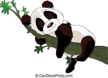 Panda schläft auf einem Zweig