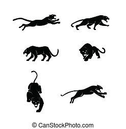 Panther hat Vektor eingestellt