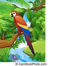 Papagei und Wasserfall.