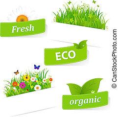 Papier klebrig mit grünem Gras und Blumen