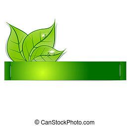 Papierstreifen mit grünen Blättern und Tautropfen auf weißem Hintergrund