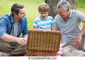 park, korb, großvater, vater, sohn, picknick