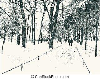 park, schnee, stadt