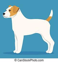 Parson Russel Terrier.