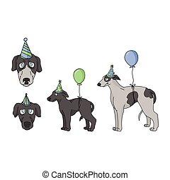 party, vektor, windhund, reizend, hundehütte, freigestellt, illustration., stammbaum, pooch, clipart., eckzahn, hund, lovers., rennsport, feier, purebred, 10., karikatur, satz, schnell, jagdhund, inländisch, puppy., eps