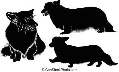 pembroke, silhouette, walisisch, rasse, hund, corgi, corgi.