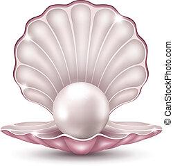 Perle in der Schale