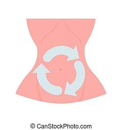 pfeile, oberkörper, ungefähr, menschliche , abdomen