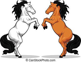 pferd, hengst, oder, tänzeln