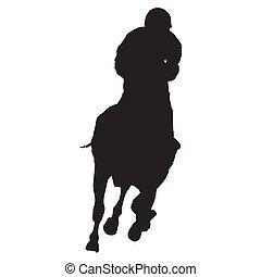 pferd, jockey, rennsport, rennender , vektor, front, silhouette, ansicht