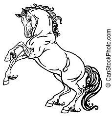 Pferd schwarz und weiß.