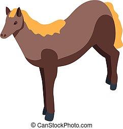 pferd, stil, isometrisch, ikone, inländisch