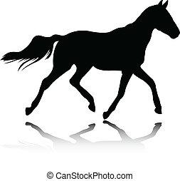 Pferd - Vektor