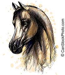 Pferdekopfporträt von Wasserfarben. Hand gezeichnete Zeichnung