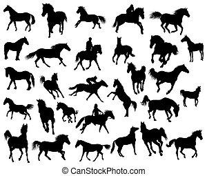 Pferdesilhouette