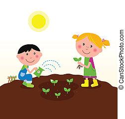 pflanzen, kinder, kleingarten, betriebe