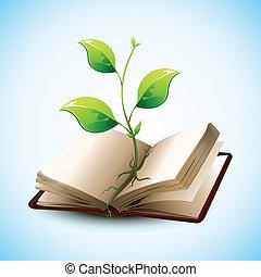 Pflanzen wachsen in offenem Buch
