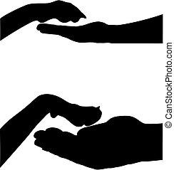 pfote, hand