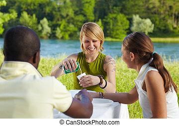 picknicking, friends