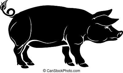 Pig Illustration.