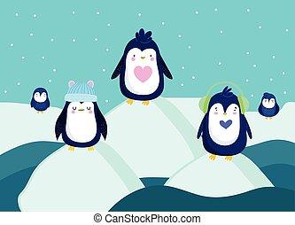 pinguine, szene, winter