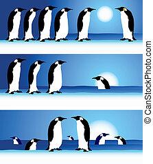 Pinguins, Winter im Bogenschießen.