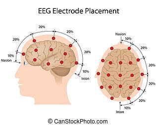 plazierung, eeg, elektrode, eps10