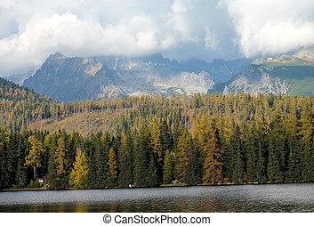 pleso, schöne , -, natur, tatra, berg, szene, slowakei, see, strbske