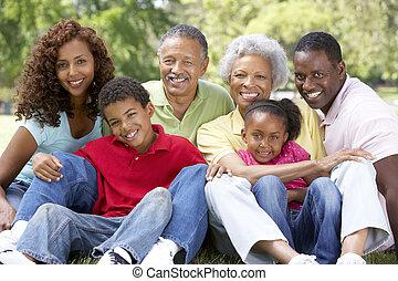 Porträt einer erweiterten Familiengruppe im Park