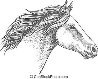 porträt, pferd, weißes, skizze, bleistift
