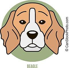 portrait- abbildung, beagle., vektor
