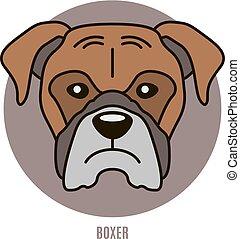portrait- abbildung, boxer., vektor