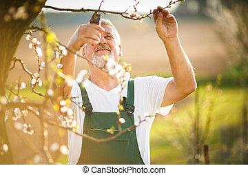 Portrait eines gutaussehenden Senior-Mannes, der in seinem Garten Garten Gärtnern ist.
