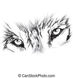 Portrait eines Wolfs.